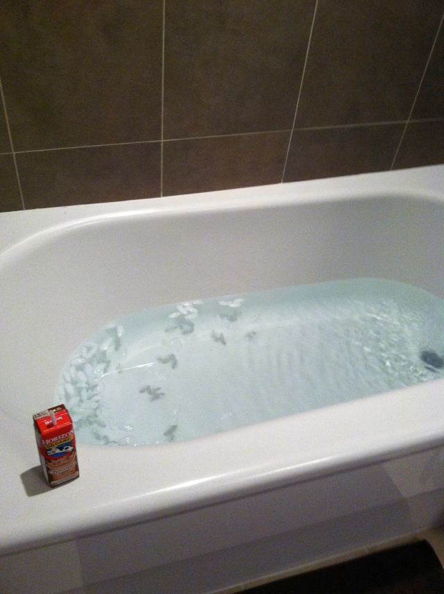 Cold water bath with ice cubes