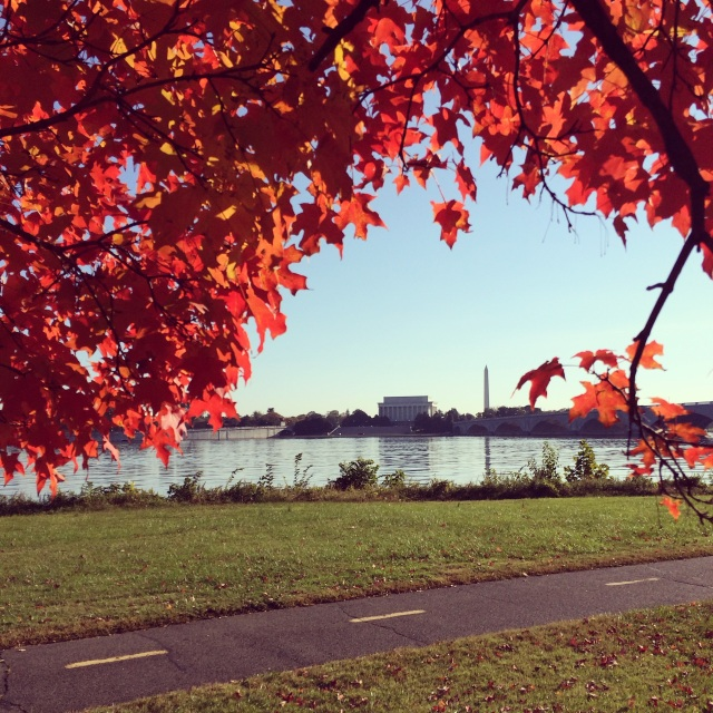 Beautiful fall day in DC for our 22-mile run