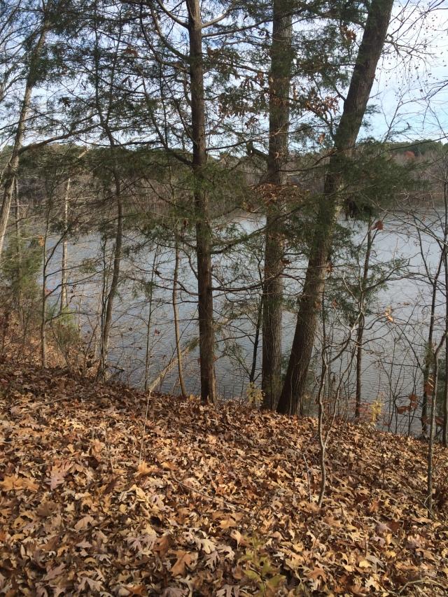 Lake Trail at Bond Lake