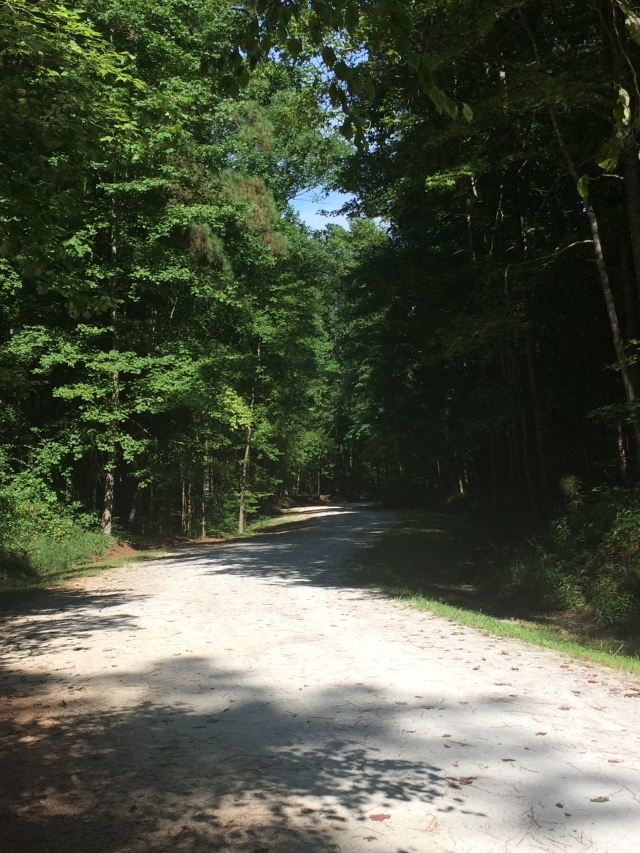 Umstead State Park