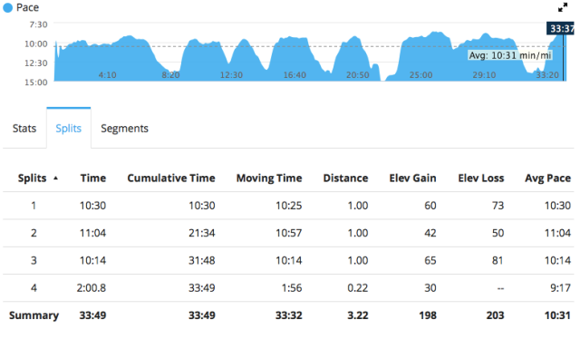 You can see how my pace corresponds with the elevation